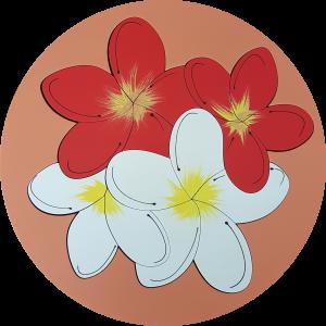 Frangipani Flower 1